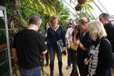 Greenhouse Fata Morgana